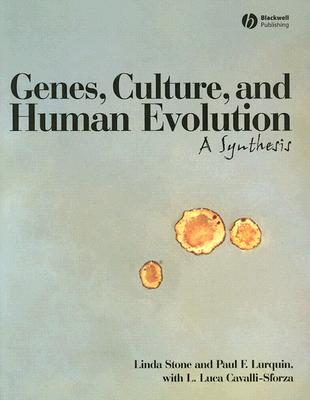 Genes, Culture, And Human Evolution By Stone, Linda/ Lurquin, Paul F./ Cavalli-Sforza, L. Luca (INT)